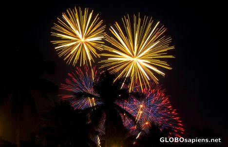 Aruba - fireworks and palmtrees