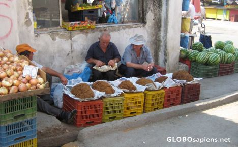 Tobacco sellers in the Tirana street market
