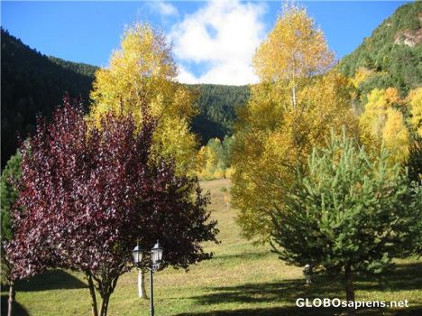 Autumn colours in the Pyrinees