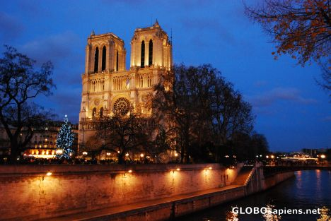 Notre Dame de Paris during night