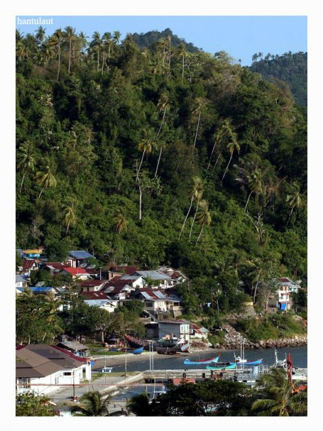 Sabang city from the hill
