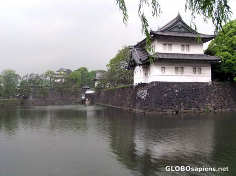 http://www.globosapiens.net/data/gallery/ja/pictures_468/--japan--tokyo--id=35201.jpg