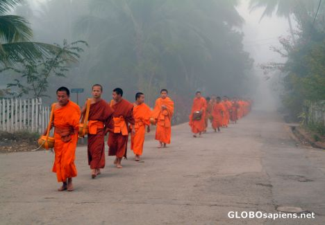 Luangprabang (LA) - Monks in the Morning Mist