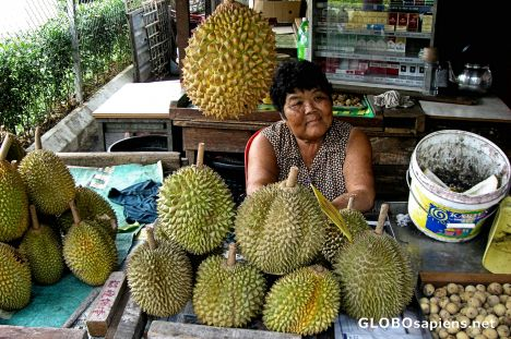 Durian Vendor, Outskirts of Malacca