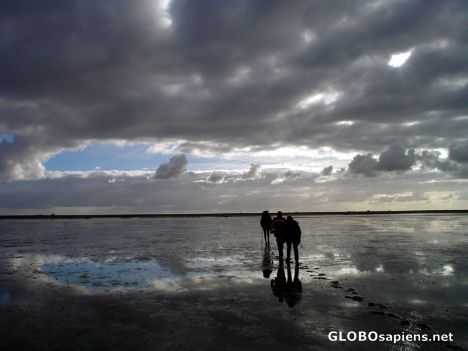 Walking on the wadden-sea during low tide