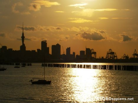 auckland - as the light fades