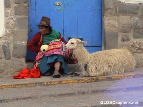 Local woman and lama in the streets of Cuzco