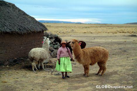 Peru - Page 5 Peru--puno--55587