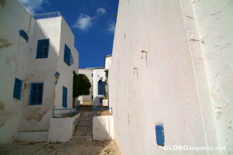 Sidi Bou Saïd (TN) - white and blue