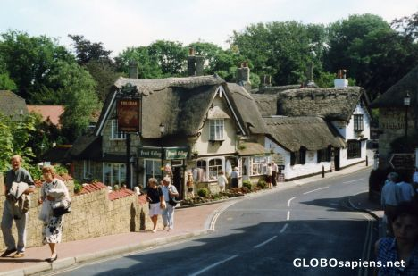 Thatched buildings
