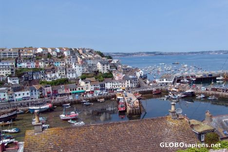 Brixham Harbour over the rooftops