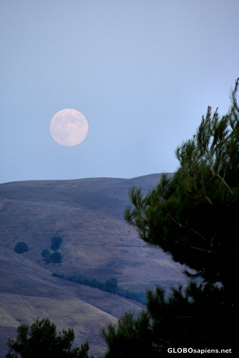 Moonrise Over Milpitas