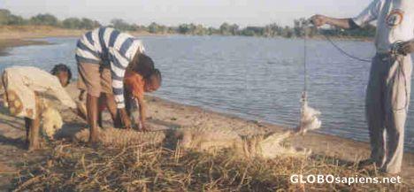 Sabou travel guide Travel reviews on Sabou Burkina Faso