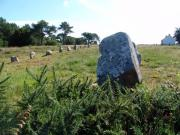 Megalithic Menhir near to Carnac, Brittany