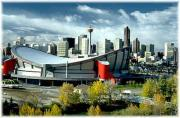 The Saddledome in Calgary