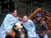 Giant Panda Group Shot