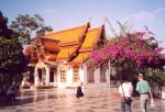 Chiang Mai travelogue picture