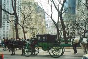 Horse-drawn carriages at the end of Mag Mile