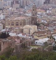 Málaga's vast cathedral from the Gibralfaro
