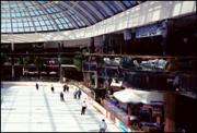 Ice Palace at WEM