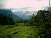 The view from Logan Pass