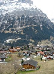 Grindelwald views
