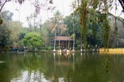 Ho Chi Minh's stilt house and pond