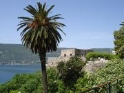 The old town of Herceg-Novi