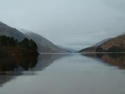 The tranquil 