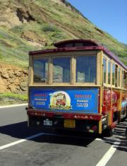 Waikiki Trolley Bus at Diamond Head