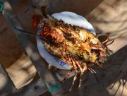 Two grilled lobsters for the price of 35,000 ariary