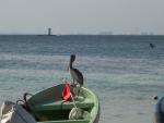 Isla Mujeres travelogue picture