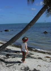 private beach in Islamorada