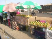 Selling mangoes in the market