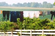 Colorful hanging laundry