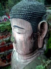 The Head of the Leshan Buddha
