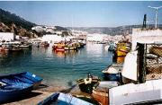 Fishing harbour, Sesimbra