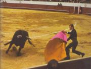 Corrida de Toros (Bullfighting) in the arenas LAS VENTAS