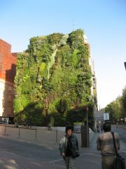 Vertical Garden, CaixaForum