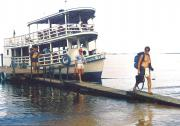 Ferry across the Amazon to a jungle walk and lodging
