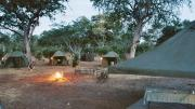 Our camp as we came home after an eventful gamedrive on chobe river