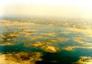 Aerial view of the swamps