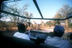 Maun travelogue picture