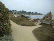 Monterey travelogue picture