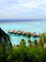 Moorea's favourite over water hotel accommodation
