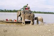 Elephant ride in Chitwan Village