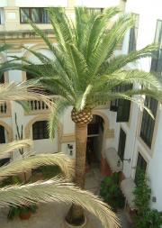 Courtyard of Hotel Born
