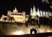 La Seu at night