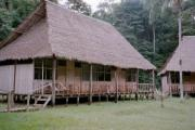 Our Jungle Hut