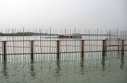 Floating Fish Farm and the Malaysian Coast, Near Mamam Beach